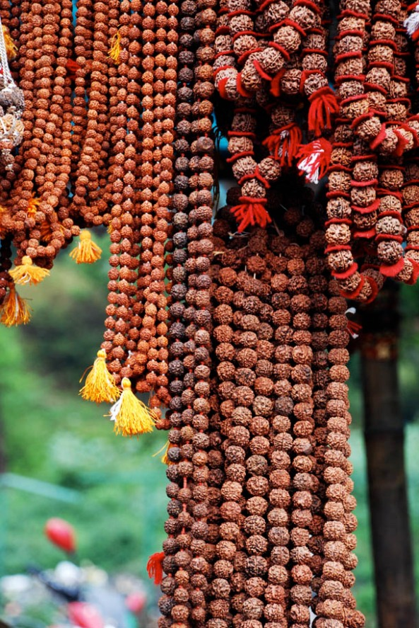 Rudrakhsa Chains - used as prayer beads in Hinduism