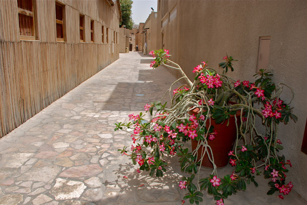 Alleys of Bastakia