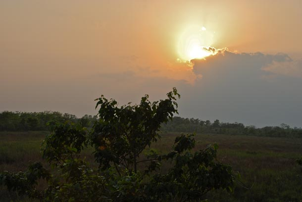 Sunset over the grasslands and the Chitwan forest