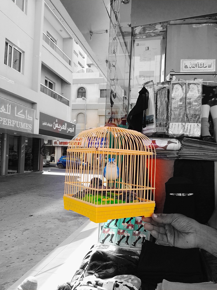 Leaving the Heart of Sharjah to explore the Old Souq